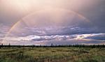 Россия, Сибирь, Среднесибирское плоскогорье, Якутия, река Оленёк у метеостанции Яральин