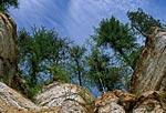 Скалы Тараканьего лога