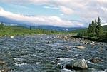Россия, Тюменская область, Ханты-Мансийский автономный округ, река Щекурья.