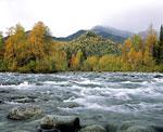 Река Парнук в осеннем варианте