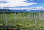 Россия, Якутия, Оймяконское нагорье, долина реки Сунтар