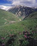 Россия, Кавказ, Северная Осетия, окрестности села Тиб