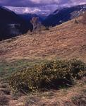 Внизу долина реки Ардон и посёлок Зарамаг