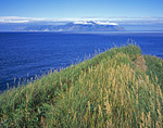 Вдали остров Завьялова. Вид с оконечности мыса Таран. Поднявшись на гребень мыса можно было запечатлеть много интересных сюжетов.