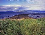 В отлив, у берега мыса Плоский оголяется большая каменистая отмель. На отдельные камни тогда, подальше в море, вылезают тюлени и сивучи. На дальнем плане гора, мыс и полуостров Беринга. Перед нами, соответственно, залив Одян.