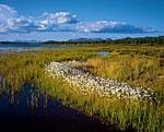 Северная оконечность озера Момонтай была основным местом базирования в этой экспедиции. Здесь одна из местных старательских артелей построила базу для отдыха и рыбалки. В этом месте множество интересных сюжетов.