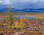 Вблизи северной оконечности озера Момонтай, между моренными холмами, нагромождёнными когда-то древним ледником, разбросано множество небольших озёр. Осень на этих озёрах стала напоминать о своём приближении уже в начале второй половины августа.