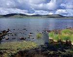 Северная оконечность озера Лабынкыр.