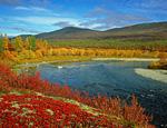 Осенние краски в долине Большой Пайпудыны