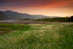 Долина реки Мома.
